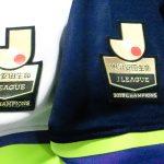 サンフレッチェ広島優勝セール幻に・・アルビレックス新潟撃破も不甲斐ない6位?